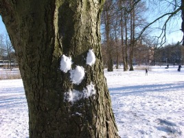 Snow Tree image.jpg